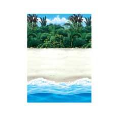 Scene Setter Island Beach
