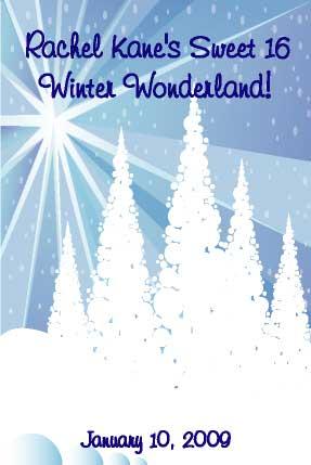 Winter Wonderland Sign In Board