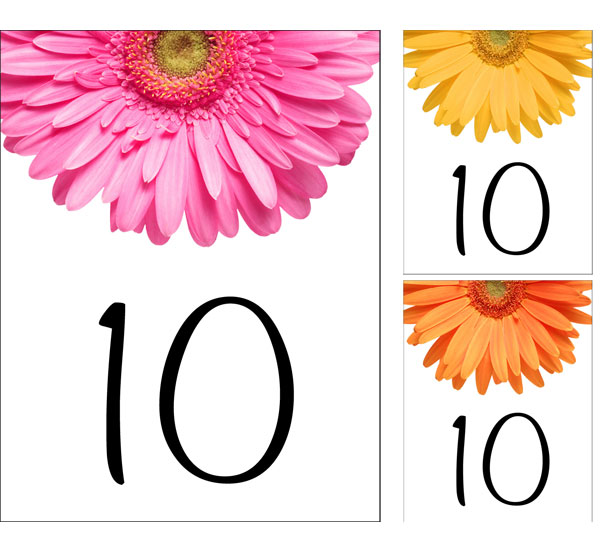 Daisy Theme Table Number