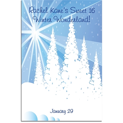 Winter Wonderland Sign In Board