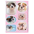 Glamour Dogs Sticker Sheets (4)