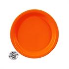 Orange Round Paper Dessert Plates (24)