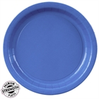 Blue Paper Dinner Plates (24)