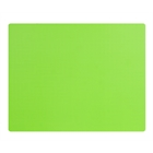 Lime Green Activity Placemats (4)