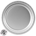Silver Paper Dinner Plates (24)