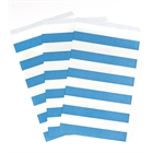 Blue Striped Paper Treat Bags (15)