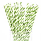 Green and White Striped Paper Straws (24)