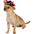 Pirate Pet Hat