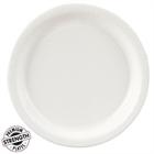 White Dinner Plates (24)
