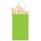 Lime Green Paper Treat Bag (1)