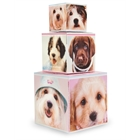 Glamour Dogs Building Blocks Centerpiece / Gift Boxes