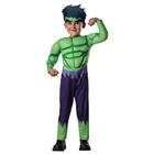 Avengers Assemble Hulk Toddler Boy Costume