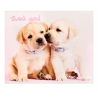 Glamour Dogs Thank-You Notes (8)