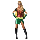 Sexy Robin Adult Costume