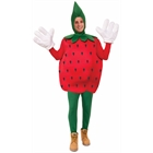 Strawberry Adult Costume One-Size
